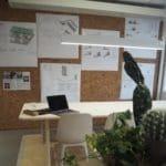 Trendy kork vegg på kontor