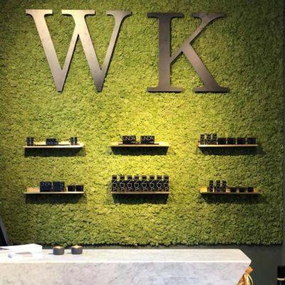 Nydelig grønn mose vegg hos WAM klinikken