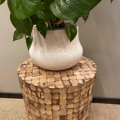 småbord laget av kokosnøtt