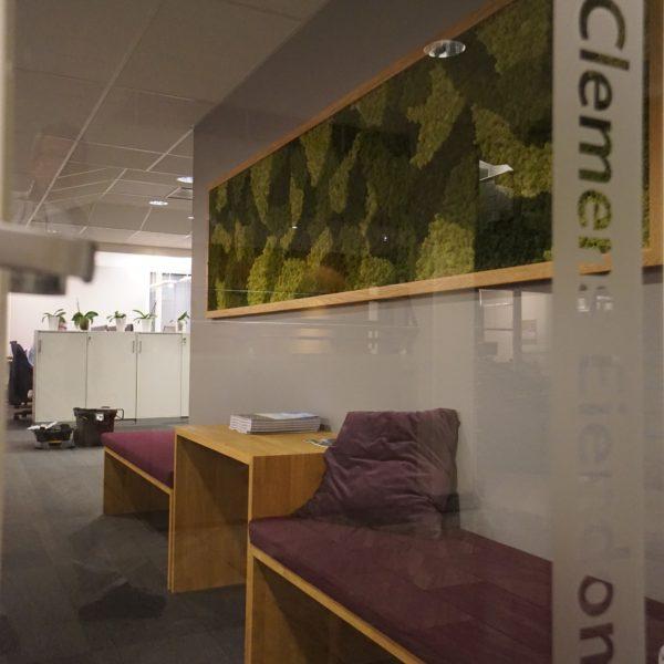Mose vegg hos Clemens i Oslo