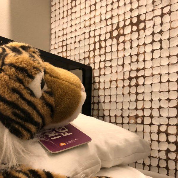 Kokosnøtt fliser i hvit rustikk på veggen i hotell suite