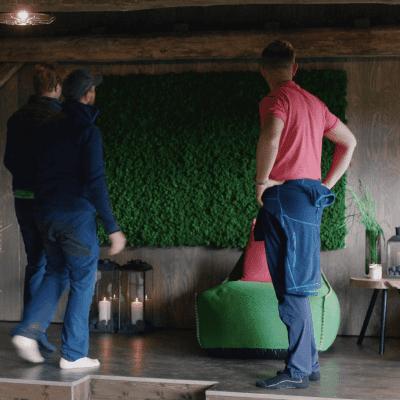 Nydelig mose vegg i Eventyrlig Oppussing med Halvor Bakke