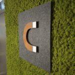 Compedge sin logo på mose vegg