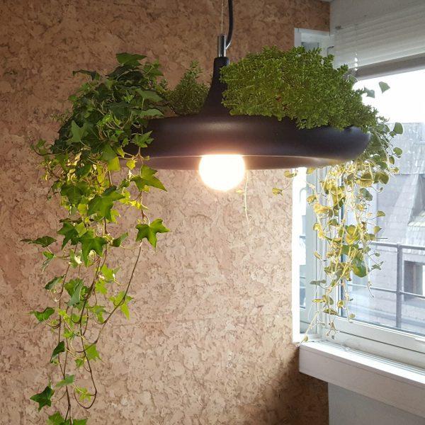 Bærekraftige vegger i naturmaterialet kork