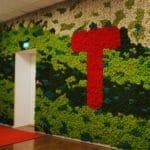Fargerike vegger i mose på kontoret til Den Norske Turistforeningen i Oslo