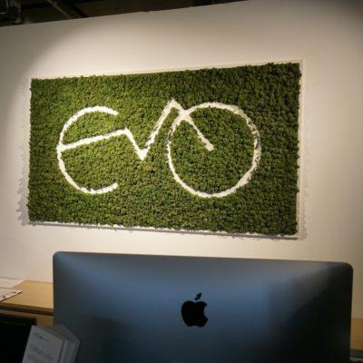 logo i mose på veggen hos evo elsykler i Oslo