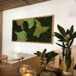 Detaljbilde av mose vegg på Rosfjord Strandhotell