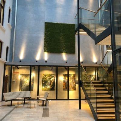 Grønn mose vegg i rådhusgata 26