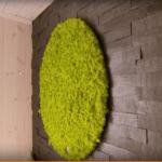 Grønn mosesirkel som fondvegg