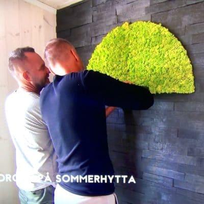 Kjartan og Knut Sommerhytta 2019 monterte en grønn mosesirkel som fondvegg på soverommet