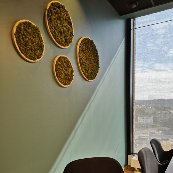 Mose sirkler på kontor på Barcode