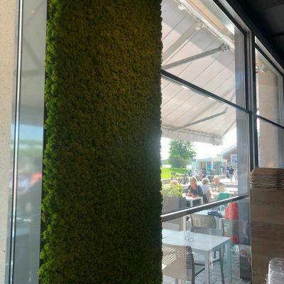 grønn mose vegg på restauranten the salmon i oslo