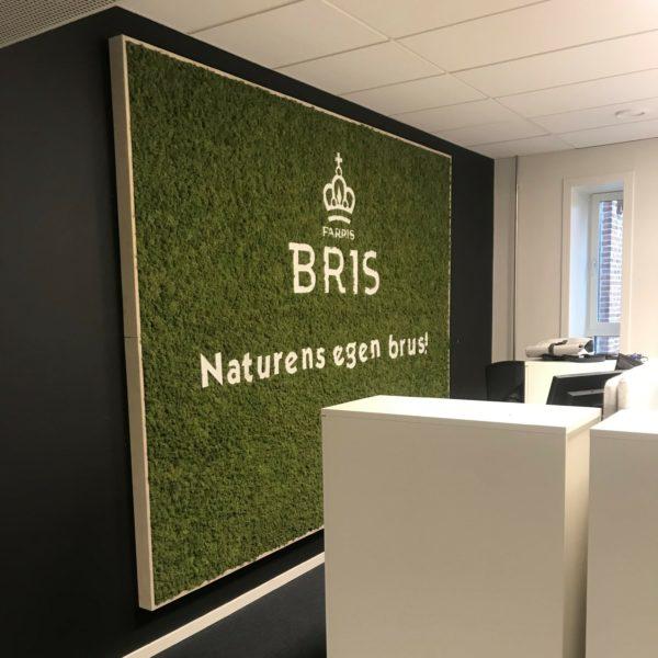 Lekker grønn mose vegg på kontoret til Farris Bris