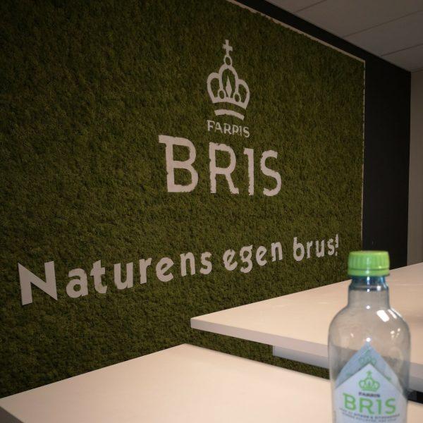 Dekorativ mose vegg på kontoret til Farris Bris
