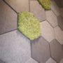Dekorative fliser i hexagon mønster