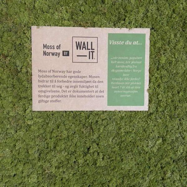 Moss of Norway på Hub WALL-IT